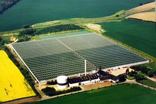 Gesamtansicht eines Treibhauses mit einer ECO2PRO-Anlage zur atmosphärischen Kohlendioxid-Düngung der Pflanzen