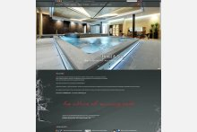 Startseite der neuen Schwimmbadbau-Website. www.steuler-schwimmbadbau.de