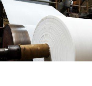 Papier- und Zellstoffindustrie